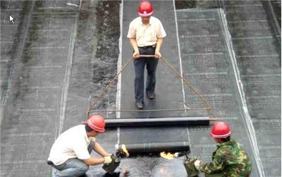 专业屋顶补漏,卫生间防水;雨棚,阳台
