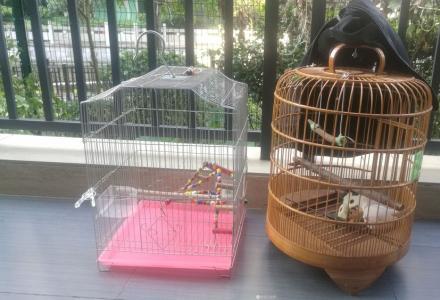 鸟笼两个转让,九成新干净卫生