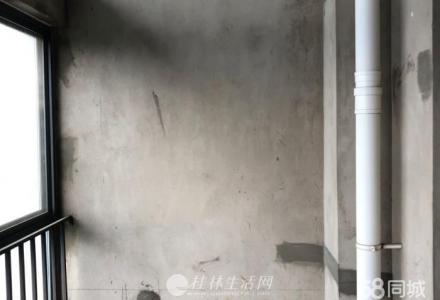 上海路安新洲安厦港湾一号顶层LOFT小复式1室1厅1卫