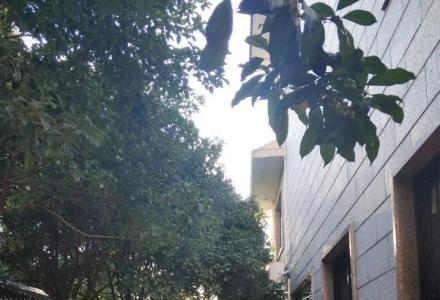 一线江景房 龙隐一区独体别墅 带大花园车位厅中空图片真实