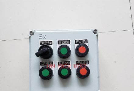 防爆按钮箱 铸铝防爆盒 防爆操作箱LBZ52-A2D2G防爆挂式操作柱
