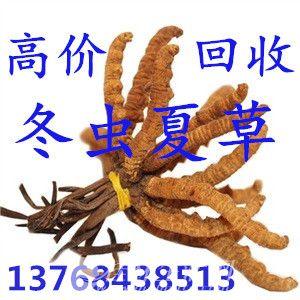 七星区回收冬虫夏草13768438513象山区回收虫草燕窝海参