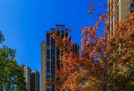 花样年麓湖国际售楼部直售87平三房47万