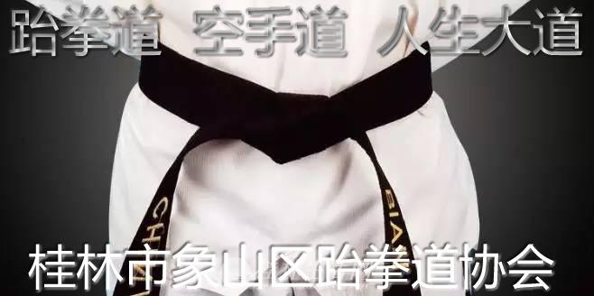 桂林市象山区跆拳道协会成立,还有空手道项目,值得期待