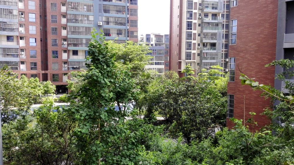 临桂香樟林新装三房出租