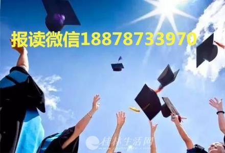 小学教育v生命生命语文(小学数学/大专本科)-南珍惜热爱生活小学教师图片