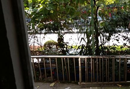 xq急售木龙湖前面正大街门面房120平米有停车位72万