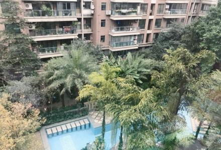 y上海路口 小区中央景观 楼王 中央尊馆 四房两厅 电梯6楼 152平 150万