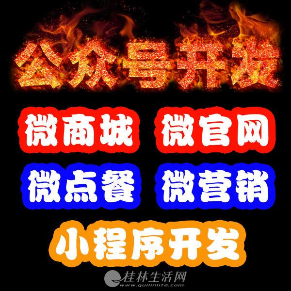 桂林软件开发 网站建设 微商城 小程序 分销系统 系统集成