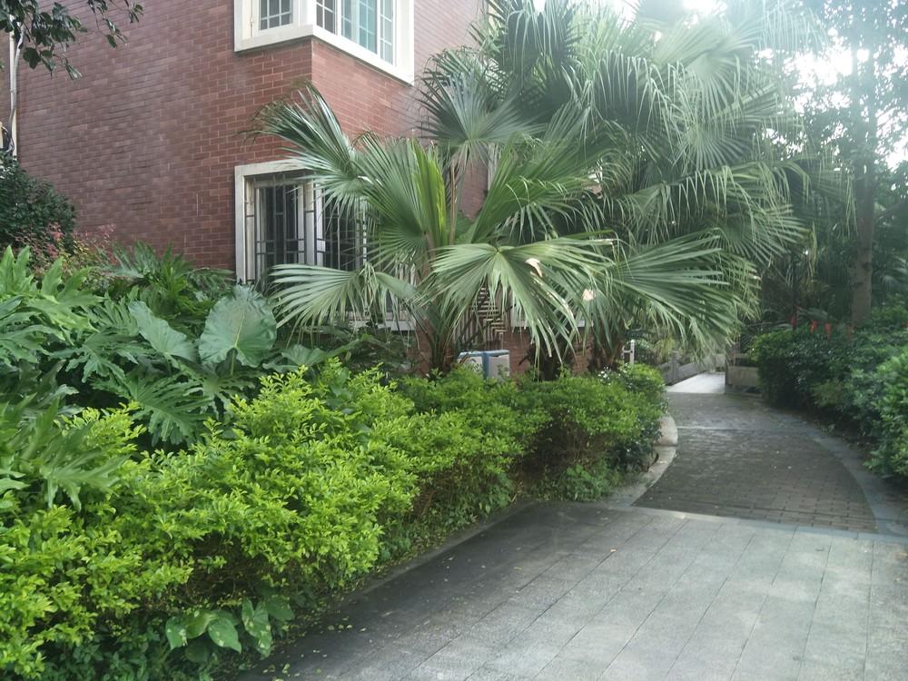 房东出租香格里拉花园3房2厅130m