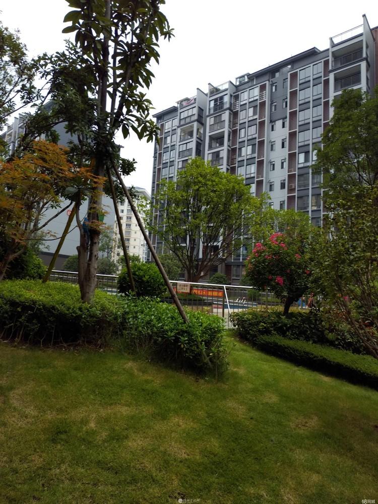 江与城精装3房2厅89平仅售93万