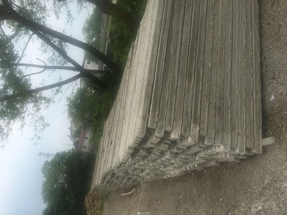 水泥桩百香果果园架厂家定制