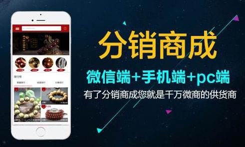淘宝店维护装修 开发微信商城 三级分销系统 手机APP开发