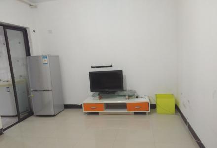 北极广场桂圳城市领地小区一房一厅