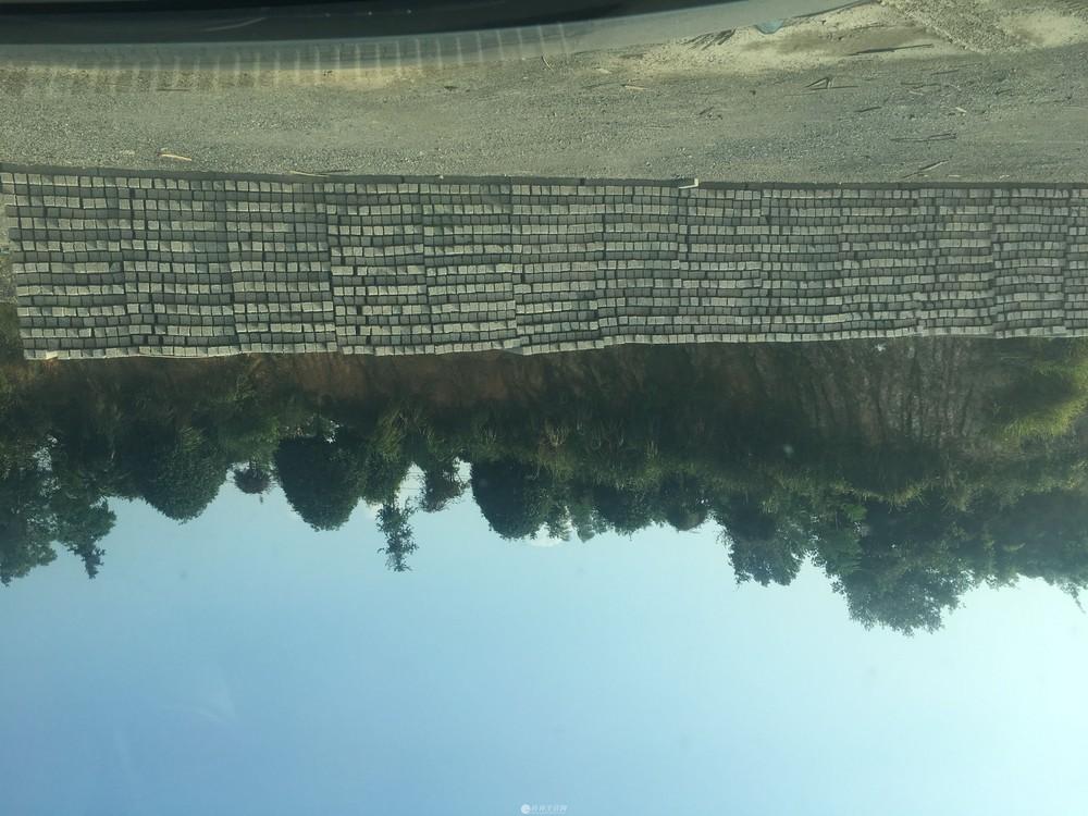 厂家直销 葡萄水泥柱 百香果水泥立柱 猕猴桃水泥桩