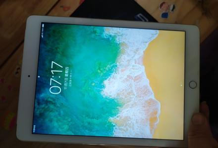 自用iPad air2代全网4猪WIFI内存64