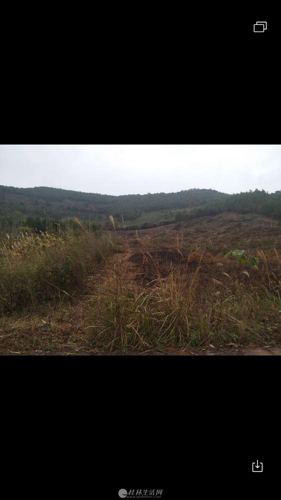 桂林市全州县荒山出租30亩土地,合同可以签约30年