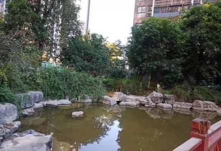 临桂 碧园印象桂林精装3房66万,送家电家具