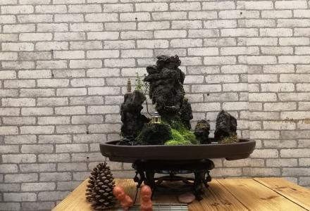 带园的盆景作品——写意中国画盆景