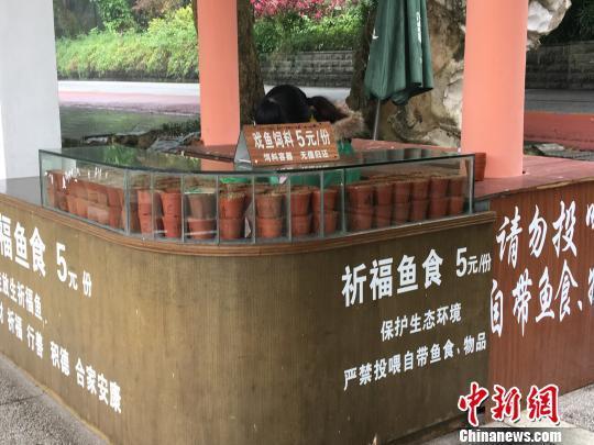 南宁市青秀山风景区内喂鱼点工作人员在售卖鱼饲料。 陈秋霞 摄