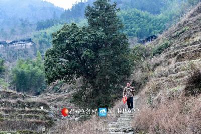 不少贫困户住在深山里,走访一次并不容易。