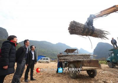 到永安乡太和村后,通过协调努力,蒋俊帮村里建了个甘蔗中转站,极大地方便了蔗农采收甘蔗。