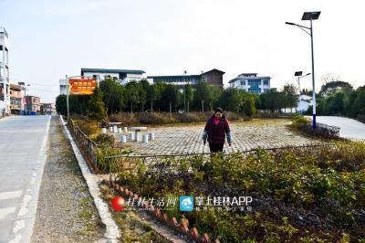 如今,村口修建了漂亮的绿化带,陈绪英希望能把整个村子的旅游带动起来。
