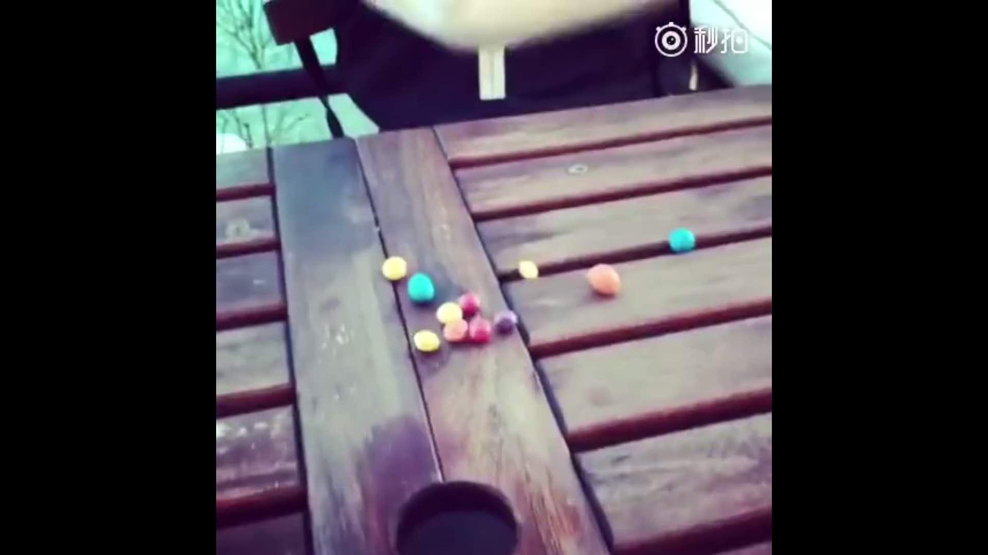 魔方变成彩虹糖