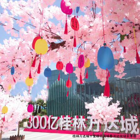 [超美哒]一夜樱花遍野,万人聚万达城赏花读春