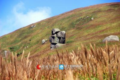 宝盖山山上的石头