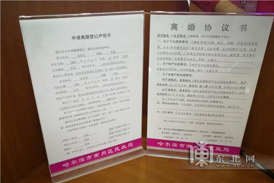 离婚协议样本。东北网记者 包海多 摄