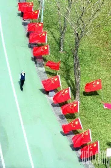 """▲台湾""""中华爱国同心会""""此前在民进党党部前的公园插满五星红旗。(图片来源:台湾联合新闻网)"""