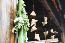 菖蒲作剑 艾草作鞭:农历五月的养生四宝