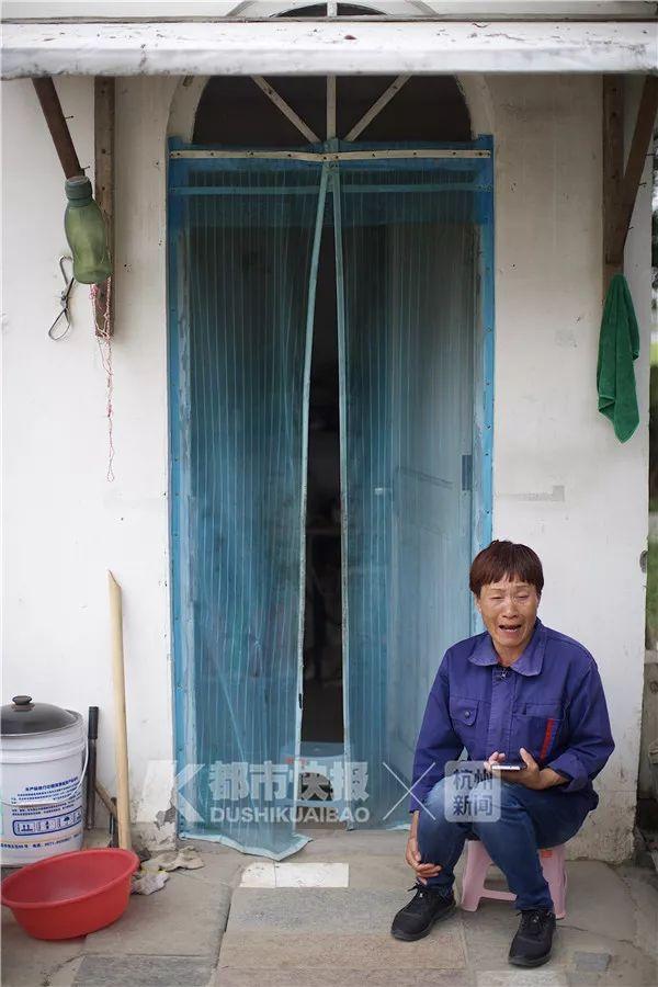 杭州网红花海被毁坏:辛辛苦苦种3年 毁坏只需3天