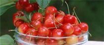 这三种小个头的水果能让血糖保持正常
