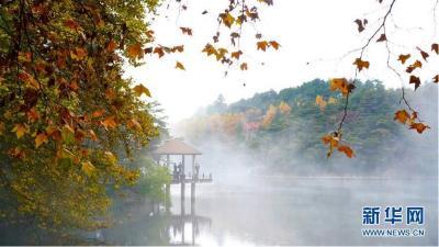游客在九江市庐山风景区内的如琴湖旁参观游玩(10月20日摄)。当日,位于江西省九江市庐山风景区内的如琴湖云雾缭绕,层林尽染,吸引众多游客前来观赏游玩。新华社记者 胡晨欢 摄