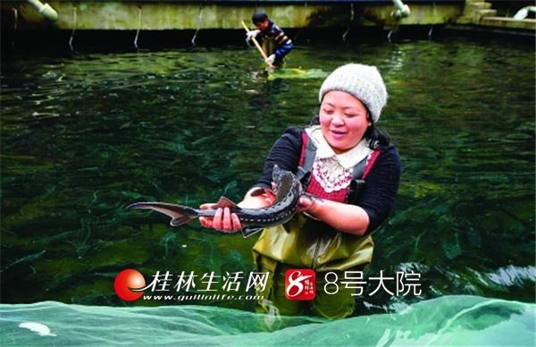 """因为在深山养鱼小有成就,潘艳耐被当地人称为""""美人鱼""""。"""
