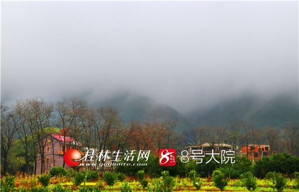 2019年1月12日,一阵细雨过后,走进广西全州县油榨园村。(供稿人:唐云军)