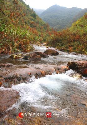 村后大山峰高岭峻,云雾缠绕,随风化雨过山谷,溪涧潺潺一路歌,带来了特别清新的空气,感受到了大自然的呼吸,心旷神怡