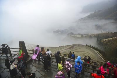 广西桂林市龙胜各族自治县龙脊梯田降雨过后云雾缭绕