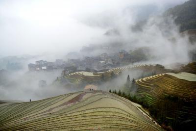 梯田和村寨在云雾中若隐若现,形成了一幅幅美丽的春天图景,吸引游人纷至沓来。