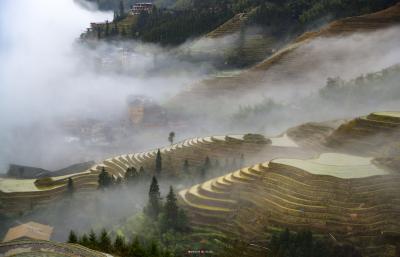 """通过""""公司+梯田+农户""""的形式开发了以农耕梯田和民居村寨为依托的梯田旅游"""