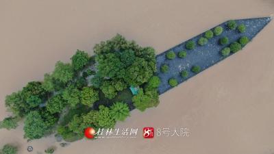 6日以来,我市出现局部大暴雨、个别站点特大暴雨过程,部分河流出现超警戒水位洪水。这是7月8日中午,无人机航拍到的洪水袭击下的灵渠。(图/兴安巨帅)