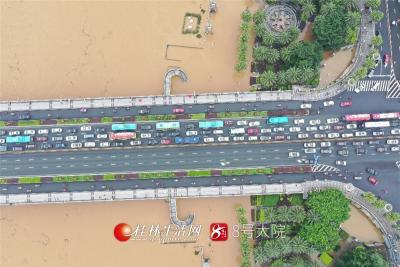 航拍下的解放桥,洪水滔滔。