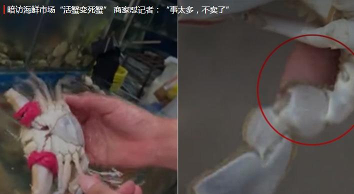 """暗访海鲜市场""""死蟹变活蟹"""" 商家怒怼记者:你事太多不卖了(视频)"""