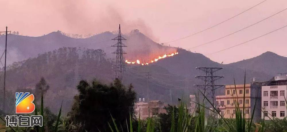 博白一山岭起火整整烧了一天一夜!
