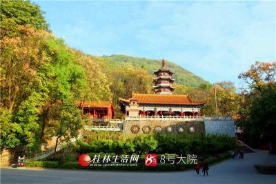 繁花落尽最是秋,秋天的湘山寺是最美的