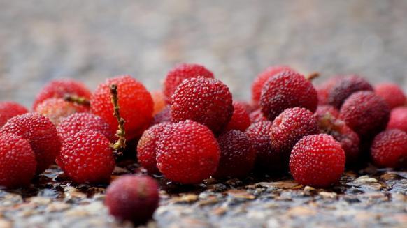 酸酸甜甜,夏季水果也养生