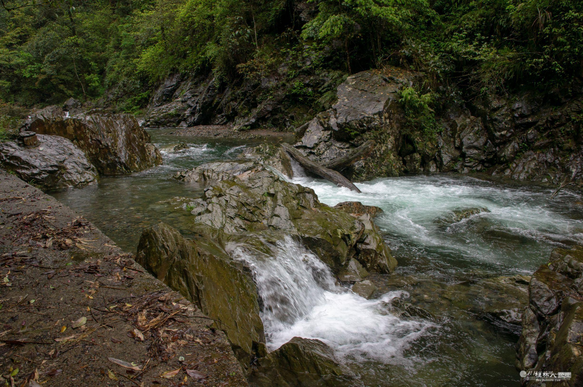人间仙境:花坪国家级自然保护区