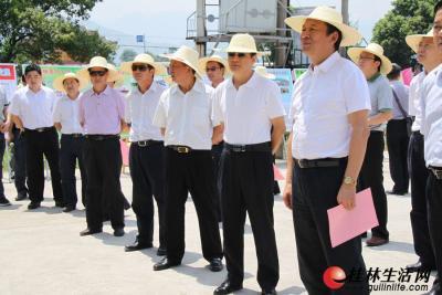 在兴安县溶江镇万亩葡萄示范基地,市领导听取汇报